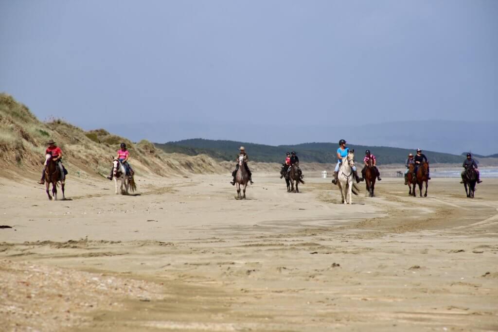 90-miles-beach-neuseeland-insel-rundreise-autoreise-reiten-am-strand-erholung