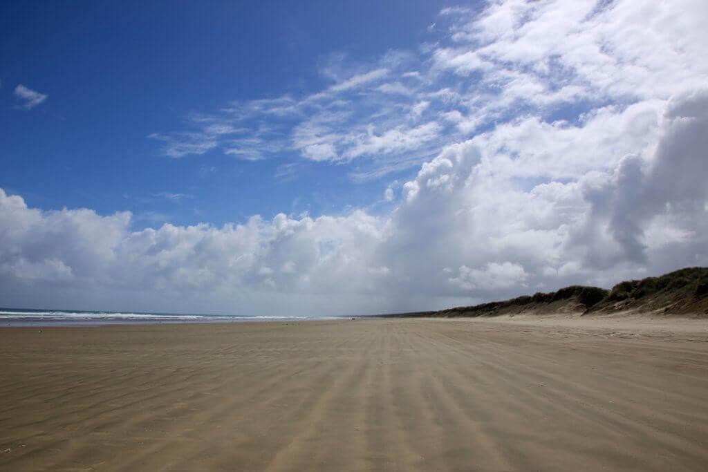 90-miles-beach-neuseeland-nord-schöner-urlaub-urlaubsprofi-reisebüro-urlaubsberater