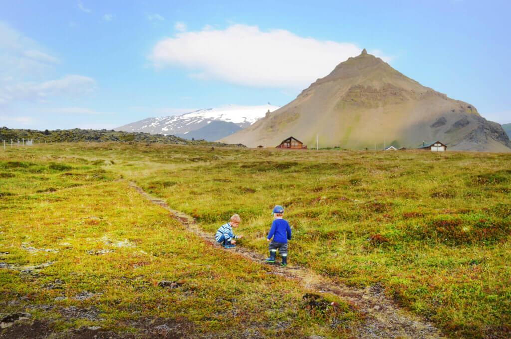 familie-in-island-unterwegs-urlaub-machen-vulkaninsel-natur