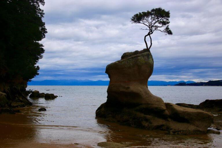 able-tasman-coast-track-wandern-rundreise-stop-neuseeland-highlights-reisebericht-blog-sicher-reisen-fotoreise-fotourlaub