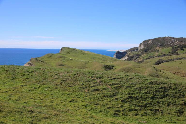 cape-farewell-urlaub-reisebericht-reisebüro-fotoreise-foto-hot-spot-have-to-sicher-reisen-neuseeland-wow