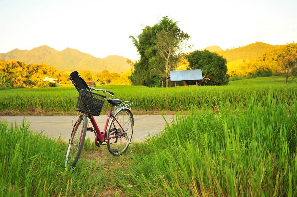 bali-individuell-reise-reisefelder-reise-eat-pray-love-fahrrad-filmtourismus-rundreise-bali-planen