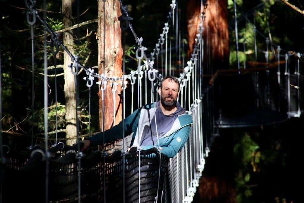 high-walk-tree-walk-redwood-forest-rotorua-natur-neuseeland-reiseinfo