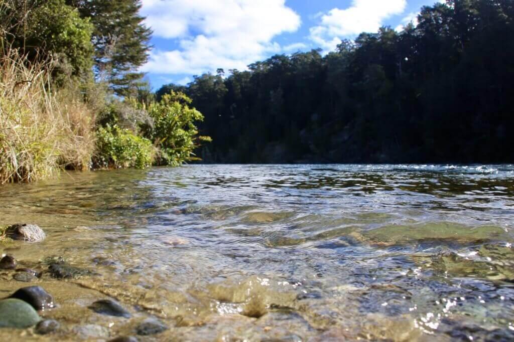 waiau-river-angeln-outdoor-neuseeland-wassersport-highlight-reisebericht-blog-reiseblog-naturspaktakel-reisebüro