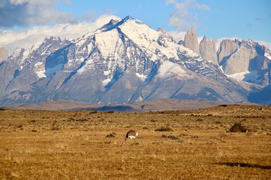 beratung-chilereise-luxusrundreise-chile-patagonien-chilerundreise-patagonien-trekkingreise-reiseidee-reisetip