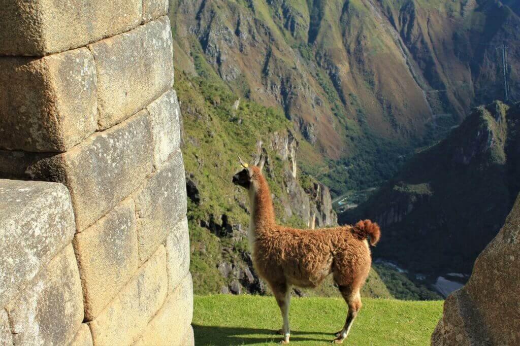 peru-reise-planen-machu-picchu-inka-trail-individuelle-luxureise-massgeschneidert