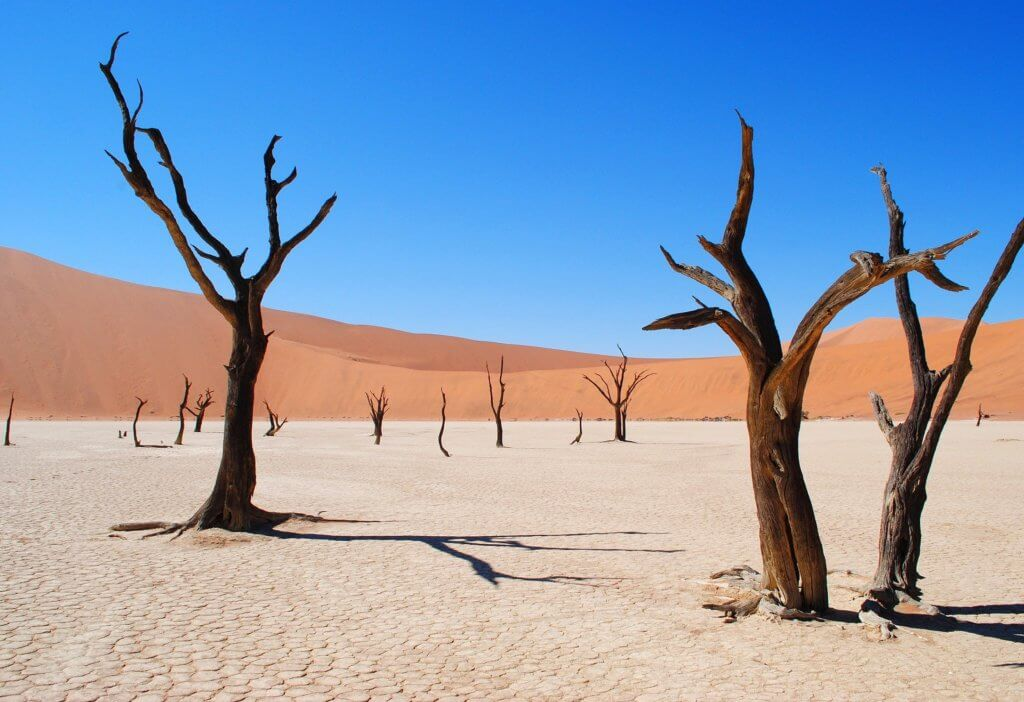 mietwagenrundreise-namibia-unterwegs-reise-planen-gruppenreise-namib-wueste