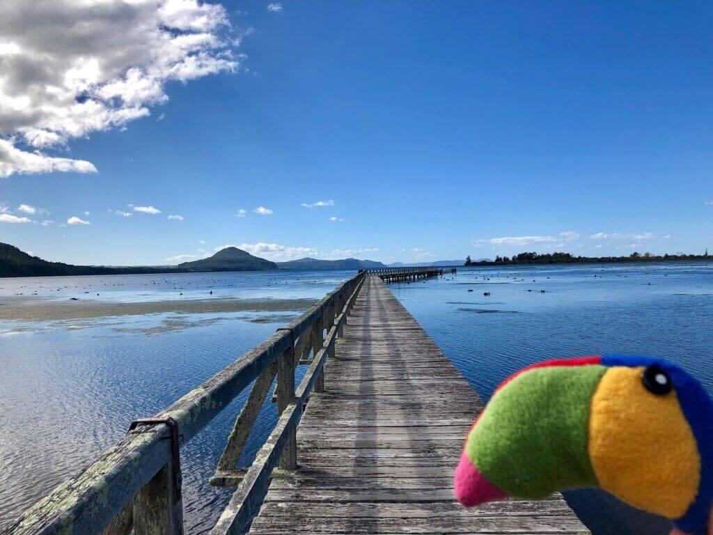 lake-taupo-tongariro-national-park-neuseelandrundreise-blog-reiseinfo-reisebüro-reisespezialist