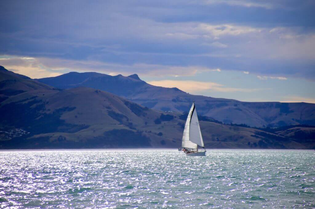 neuseeland-akaroa-segeln-segelturn-segelboot-buchen-beratung-reiseprofi-tierbeobachtung-delphine-delfine-tagestrip-tagesausflug-empfehlung