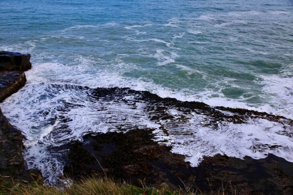 neuseeland-catlins-watching-wale-beobachten-strandspaziergang-natur-erleben-fotos-fotoreise-reisebericht-reisebüro