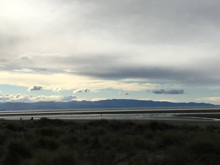 neuseeland-nelson-beach-strand-badeort-rundreise-reiseblog-reisebericht-reisespezialist-urlaubserfahrung-reisebüro
