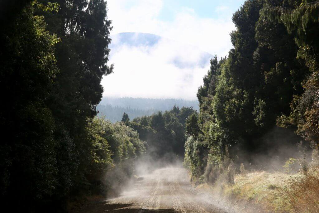 neuseelands-erleben-bereisen-reisebüro-of-track-mietwagen-buchen-reisebüro