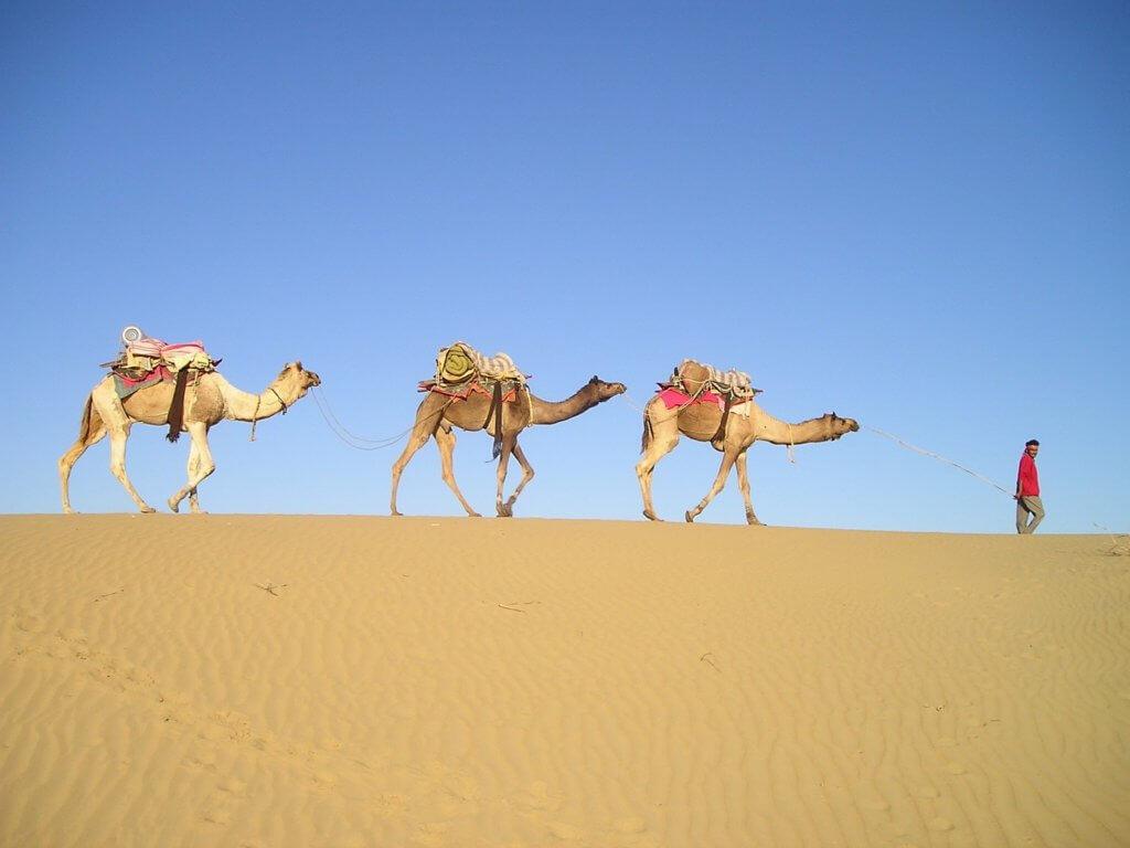 individuelle-rundreise-indien-buchen-rajasthan-reisespezialist-fuer-indien