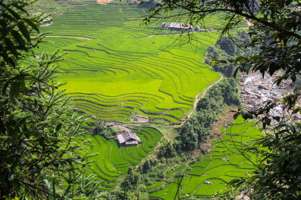 holiday-vietnam-reisterrassen-rundreise-geplant-individuell-organisiert