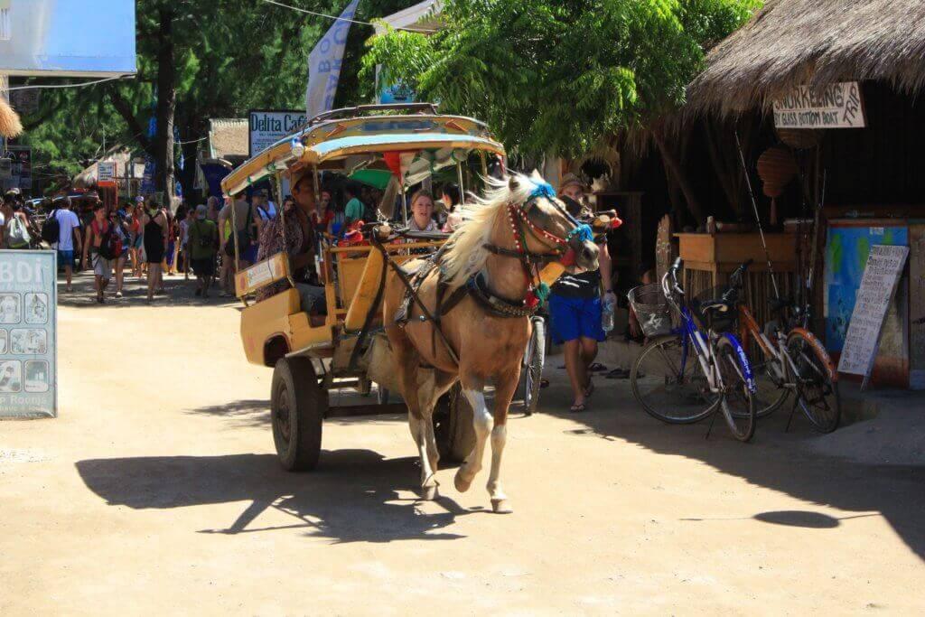 bali-rundreise-planen-mit-reiseplaner-fotos-indonesien-reisetipps-reiseexperte-indonesien