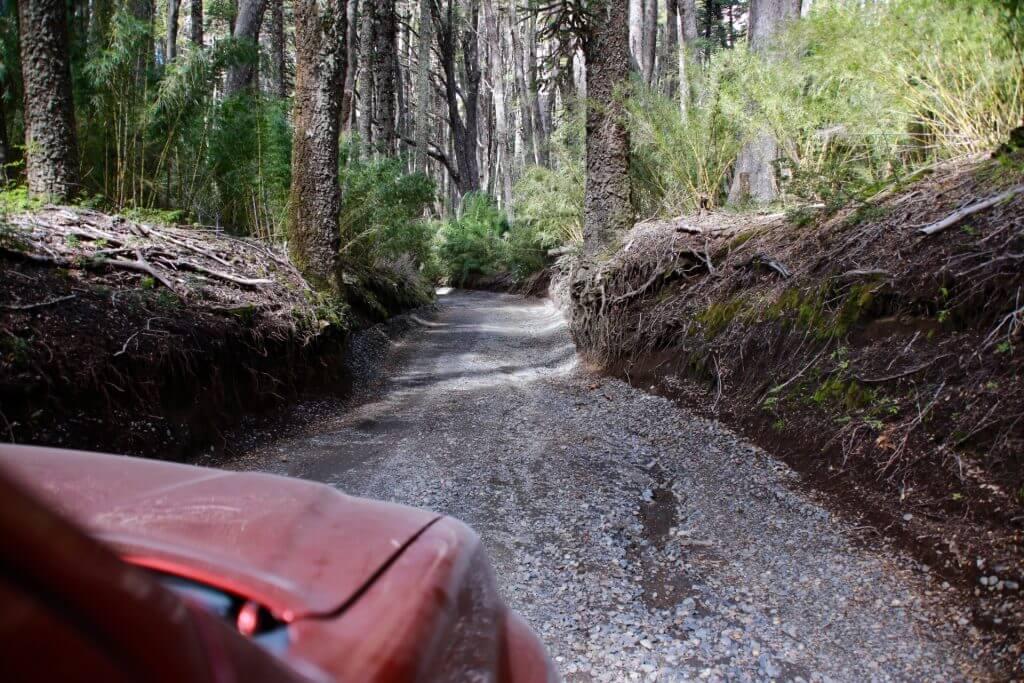 trekkingurlaub-wanderurlaub-fotoshot-nice-shot-fotographieren-chile-seengebiet-roadtrip-auto-selbstfahrerreise-fahrspass