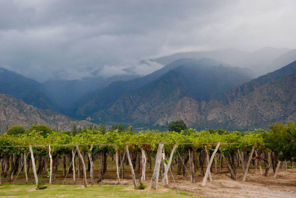 suedamerika-reisen-wein-reise-argentinien-genussreise-planen-luxusreise