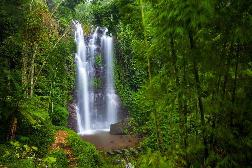 wellness-auf-bali-reise-individuell-ubud-inland-reise-planen-reisebüro